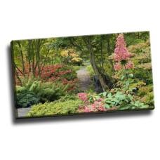Bellevue Botanical Garden, Washington