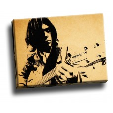 Neil Young Guitar Music  Collage
